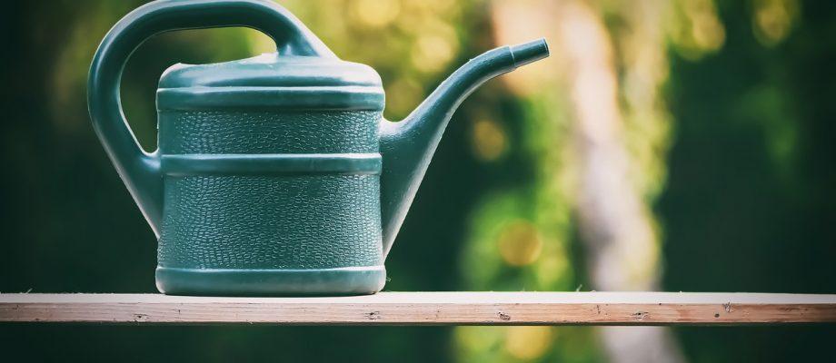 ako správne polievať záhradu